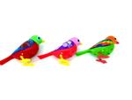 E4742: Musical birds