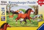 8322: Two horse puzzles