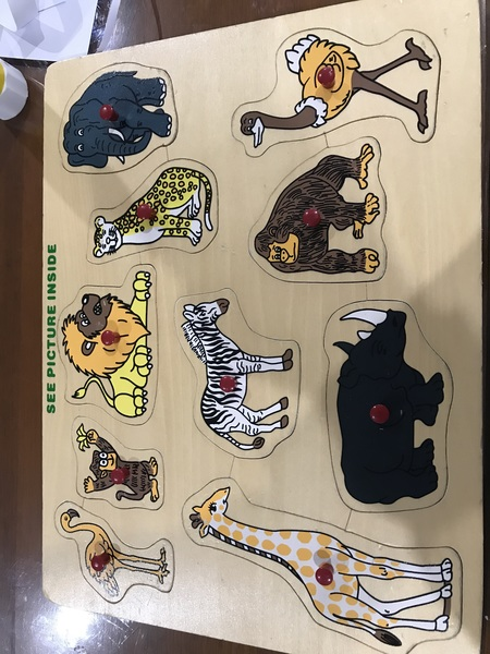 1170: Animal safari puzzle