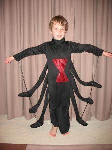 693B: Spider costume