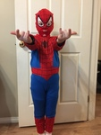 861B: Spiderman costume