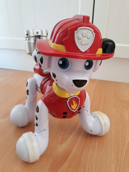 1002: Paw Patrol Marshall Pup