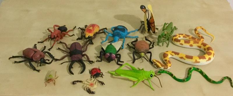 0471: Creepy crawlies