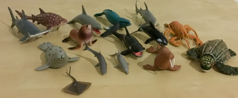 0474: Sea creatures