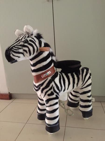 0559: Zebra