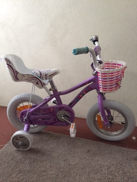 0100: Purple mongoose bike