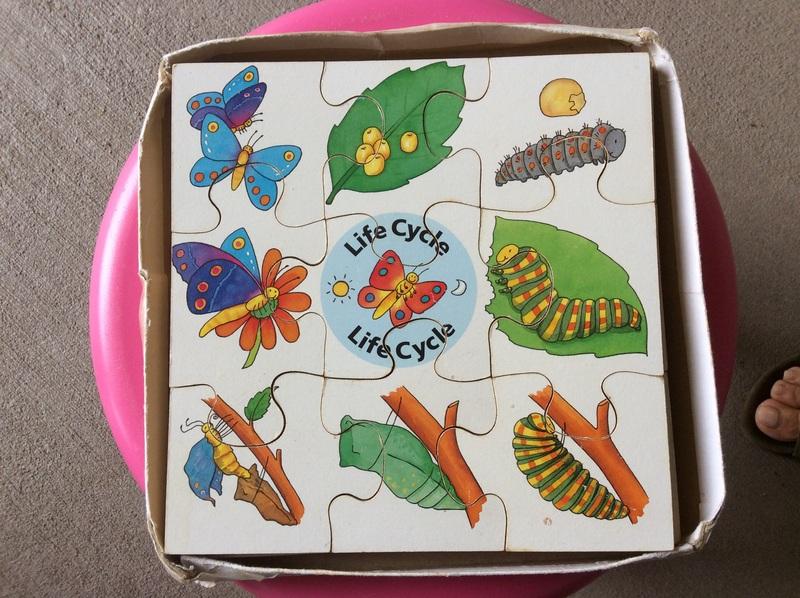549: Lifecycle jigsaw