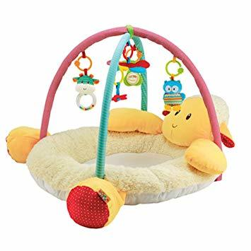 A4024: LAMB ACTIVITY ARCH & MAT