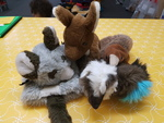 E5052: AUSTRALIAN ANIMAL PUPPETS