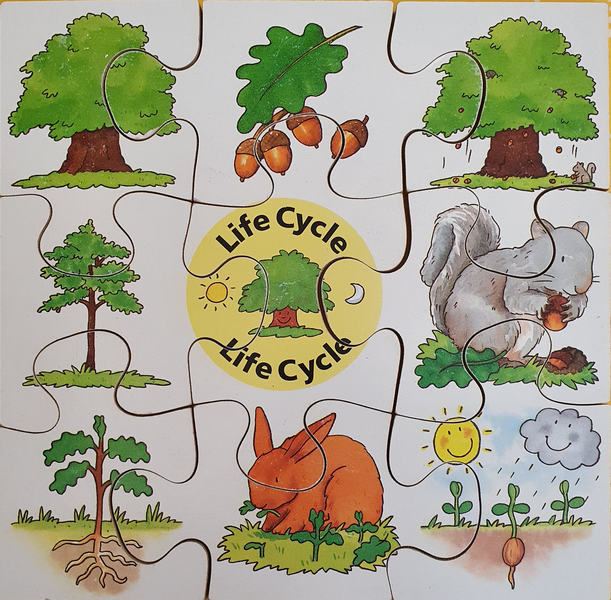 D0014: TREE LIFE CYCLE PUZZLE