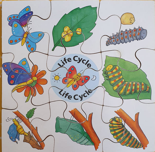 D0016: BUTTERFLY LIFE CYCLE PUZZLE