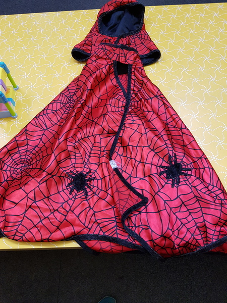 D0025: SPIDER CAPE WITH HOOD