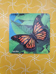 P1081: RAISED BUTTERFLY PUZZLE