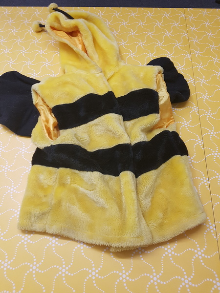 D0066: BUMBLE BEE JACKET