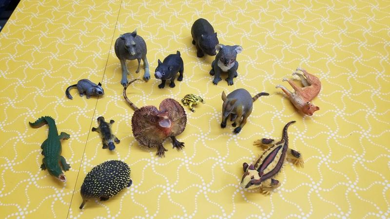E1284: AUSTRALIAN ANIMALS