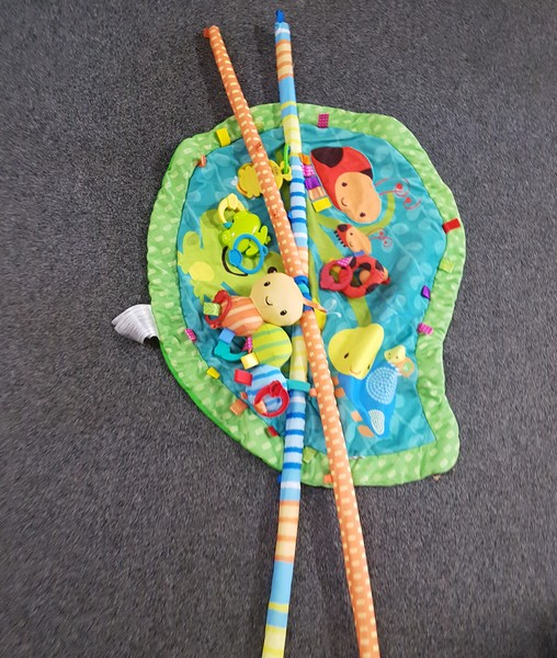 B1155: BUGS & HUGS PLAY GYM
