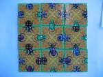P701: Bugs nature puzzle