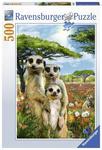 P527: 500 piece Puzzle - Mischievous Meerkats