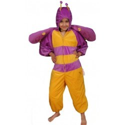 E940: Butterfly Costume - Large