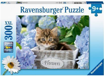 P640: 300 piece Puzzle - Tortoiseshell Kitty