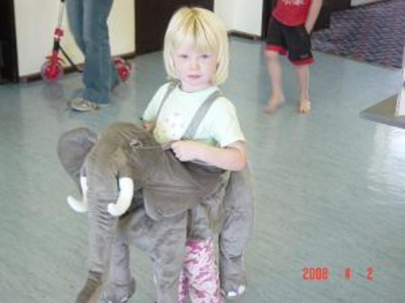 101: Wrap and Ride Elephant