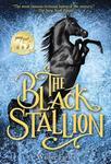 E3.423.1: The Black Stallion