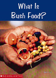 E3.020.11: LARGE BOOK- WHAT IS BUSH FOOD?