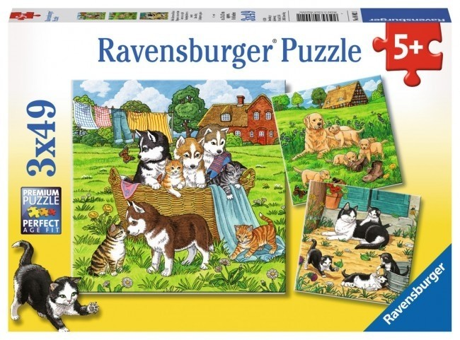 C2.021.4: CAT AND DOGS Puzzle