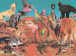 C2.051.13: The Outback Puzzle