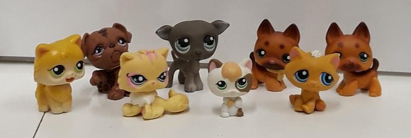 E2.910.3: My Little Pets