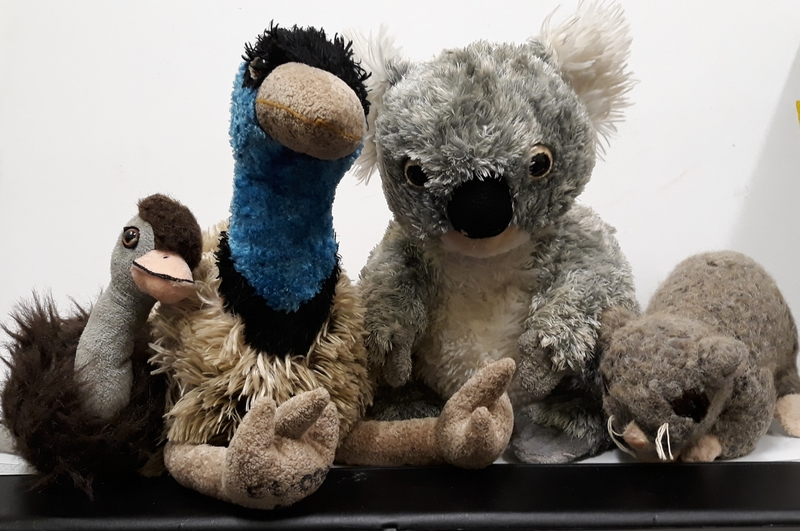 E2.009.4: Australian Animals