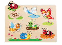 C2.251.2: INSECT PEG PUZZLE