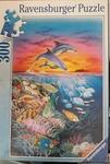 C2.300.3: Dolphins