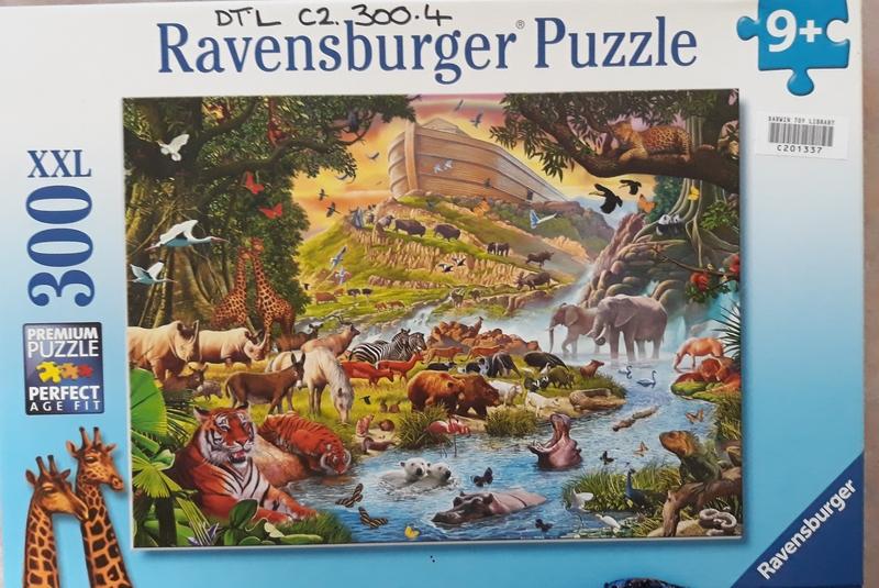 C2.300.4: Noah's Ark Puzzle
