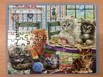 C2.963.3: Kittens Puzzle