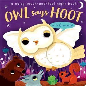 E3.902.3: Owl say Hoot