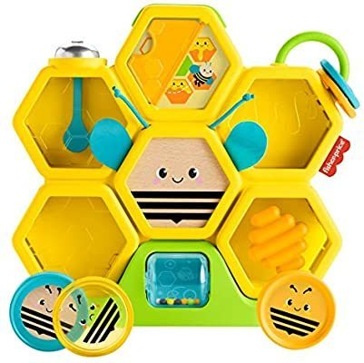 B2.021.2: Fisher Price Busy Activity Hive