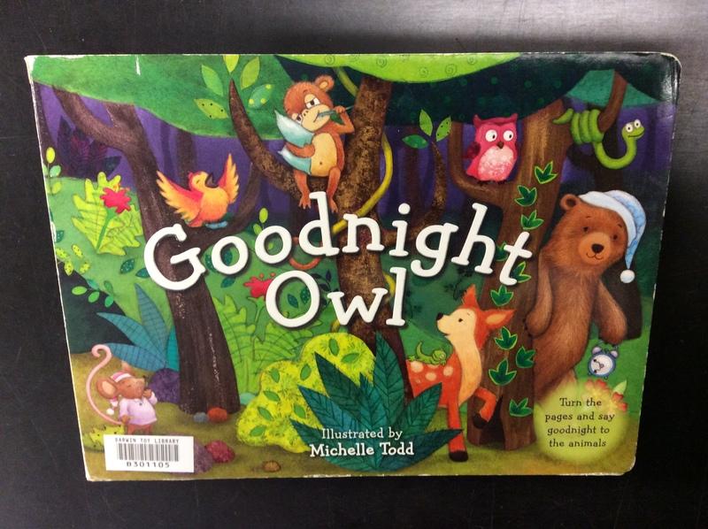 B301105: Goodnight Owl Book