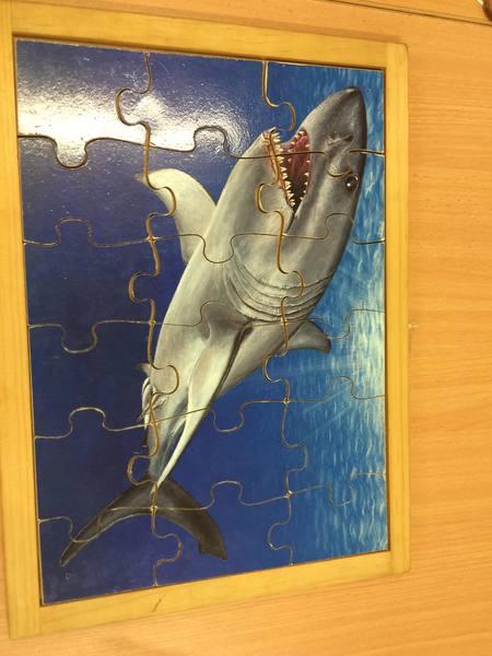 C4.590.1: SHARK PUZZLE