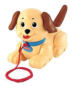 B1.002.7: Pull along DOG