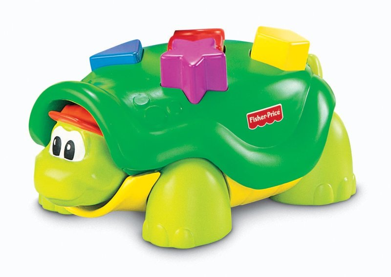 C1.012.4: POPPING SHAPE TURTLE