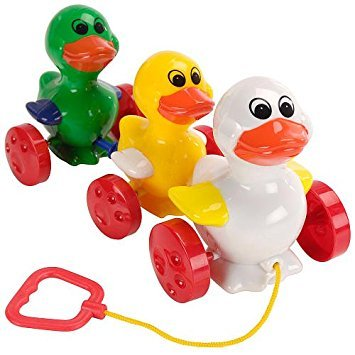 b1.002.9: Pull along DUCKS