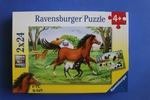 G269: World of Horses Puzzle