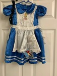 G285: Costume:  Alice in Wonderland