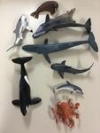 524: Sea Creatures