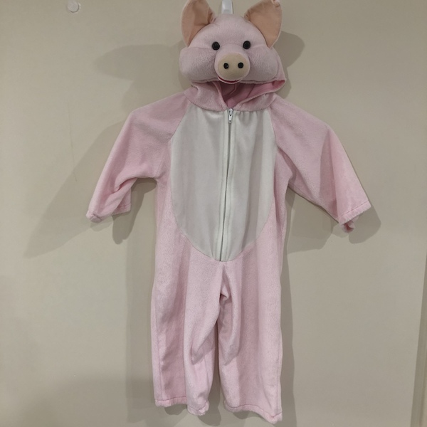 G125: Pink Pig Costume
