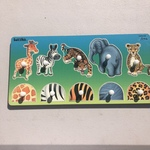 A96: Matching Wild Animals