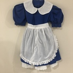 G132: Alice In Wonderland Costume