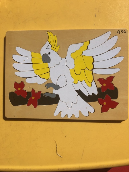 A36: Cockatoo Puzzle