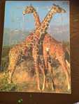 A75: Giraffe Puzzle